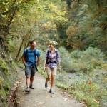 hiking nedir
