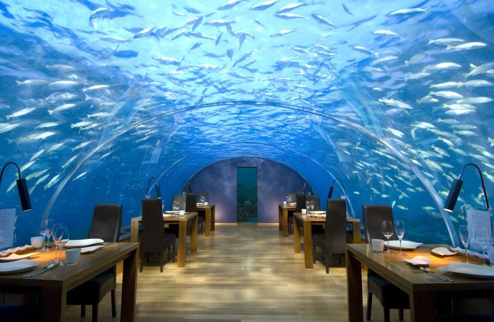 conrad maldivler