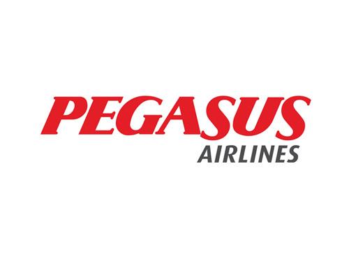 pegasus-large-logo