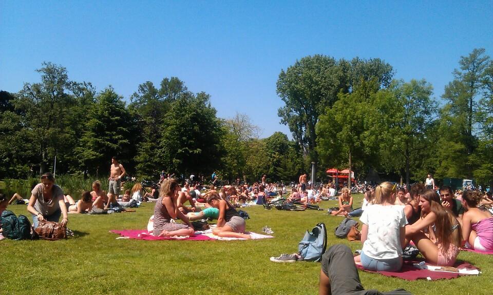 vondelparkta-piknik