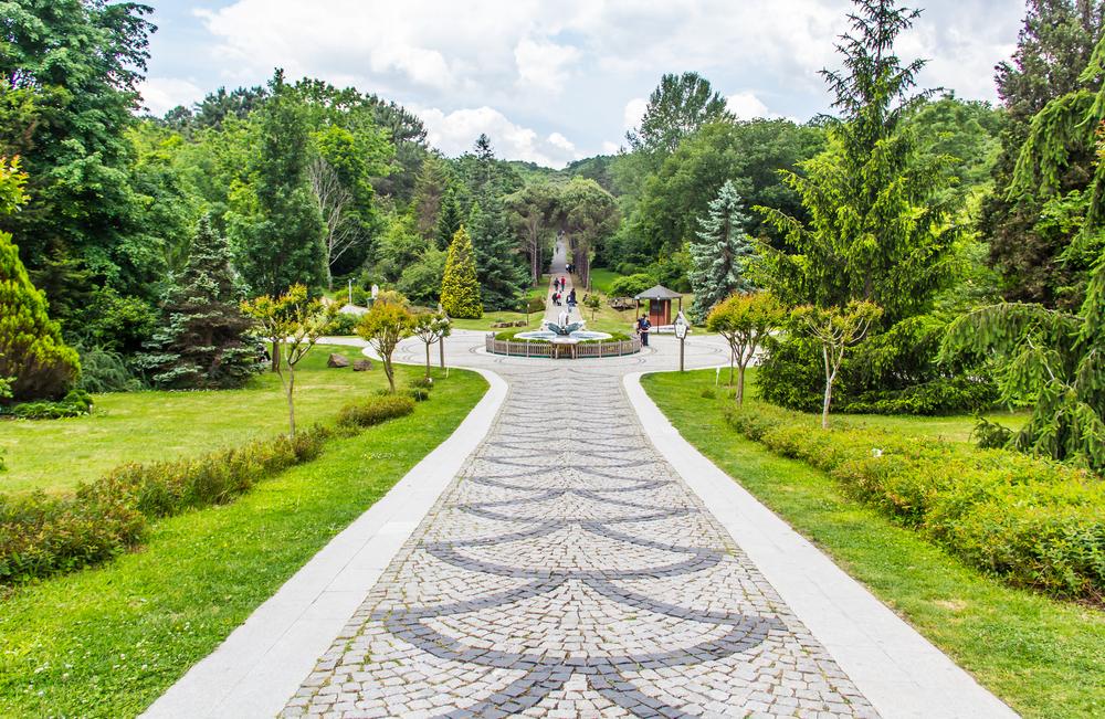 Atatürk Arboretumu Nerede?