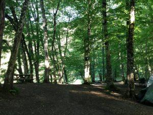 yedigoller-parki