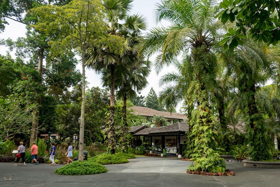 singapur-botanik-bahce
