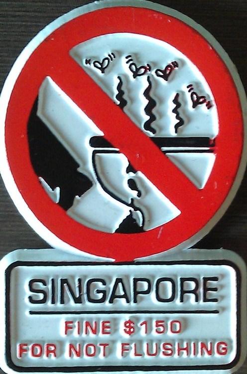 singapur-yasaklar-ulkesi