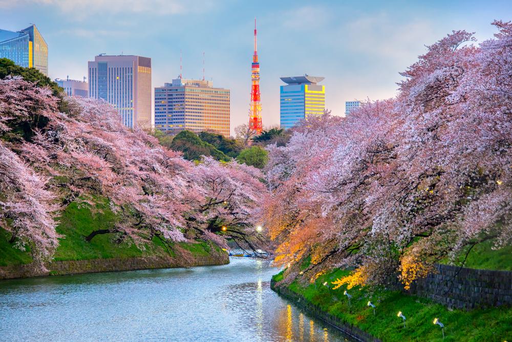 Tokyo'ya Ulaşım